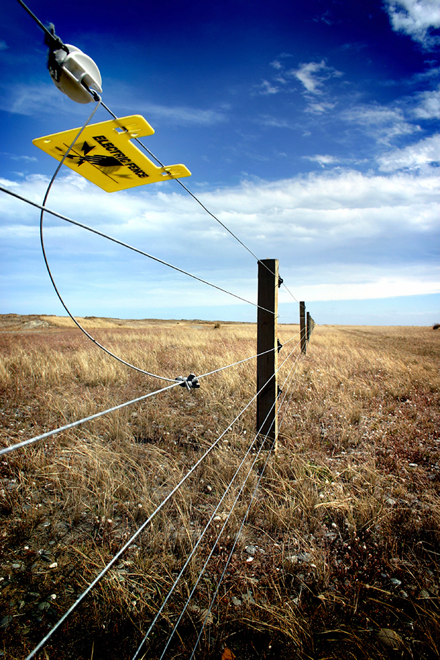 Electric Fence Introduction Blain S Farm Amp Fleet Blog