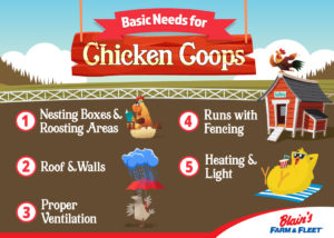 Necessities and Tips for Building a Chicken Coop | Blain's