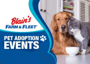 Blain's Farm & Fleet Pet Adoption Events | Blain's Farm